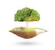 la-terre-et-arbre-de-planète-44517743